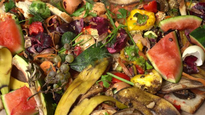 Food-waste-AdobeStock_290896126-web.jpeg