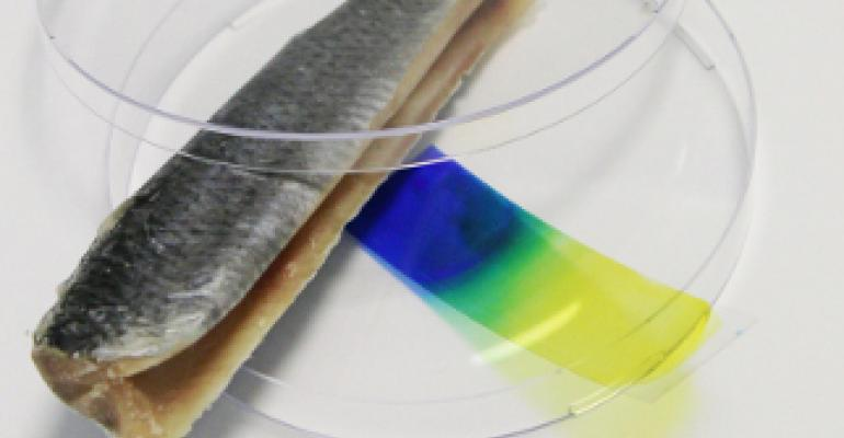 Sensor film reacts to spoiled food and warns consumers