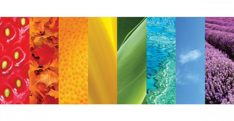New views in hues: Color trends and preferences in packaging