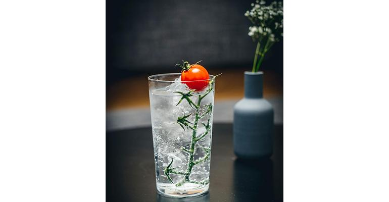 sustainable gin and tonic