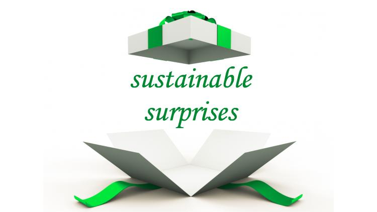 Sustainable surprises 2018
