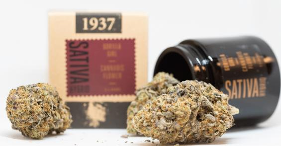 New Cannabis Packaging Enhances the Flavor Experience